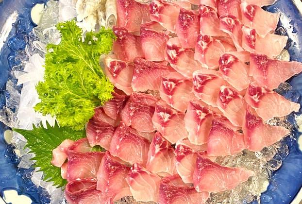 Ryusuitei: 'Koi-no-arai' (washed carp) and other pristine freshwater fish