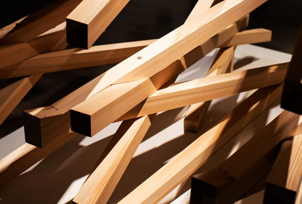 Kengo Kuma, seeing Tokyo from a cat's eye view